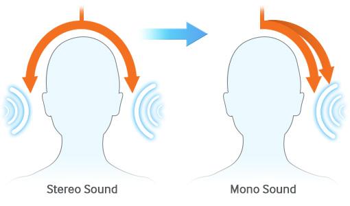 mobile_accessibility_mono